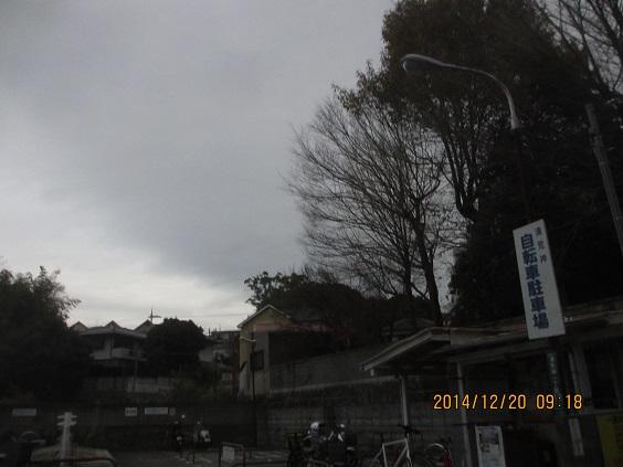 IMG_c6108.jpg