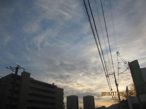 IMG_c8680.jpg